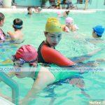 Tác dụng của bơi lội đối với cuộc sống con người