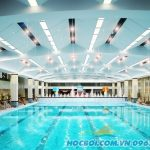 Giá vé bể bơi bốn mùa Hapulico hè 2021