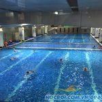 Phương pháp dạy học bơi hiệu quả nhất tại bể bơi Hapulico