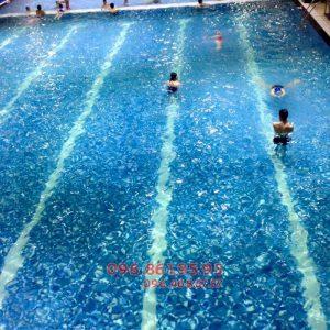 Trải nghiệm môi trường học bơi cực tuyệt vời tại bể bơi Hapulico