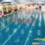 Những điều cần biết về Hapu Swimming