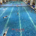Tổng hợp thông tin khóa học bơi mùa đông 2018