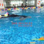 Lớp học bơi bể The Legend chất lượng tốt, giá rẻ nhất Hà Nội